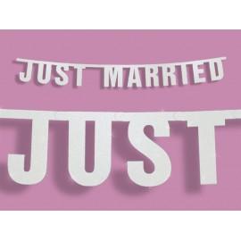 Bandeirola Recém casados 18 x 170 cm