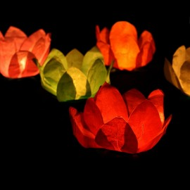 6 Velas Flotantes forma Flor 29 cm