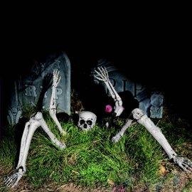 Esqueleto Abre Tumbas
