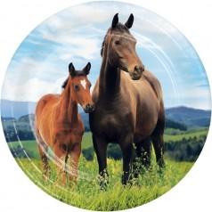 Aniversário Cavalos