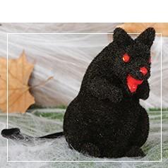 Bichos y Animales Halloween