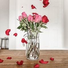 Pétalas de Flores