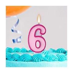 Aniversário 6 Anos Menina