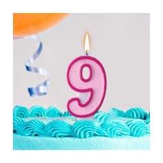 Aniversário 9 Anos Menina