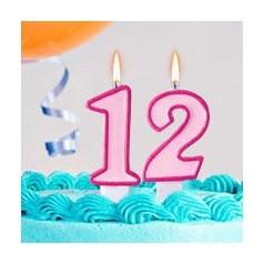 Aniversário 12 Anos Menina