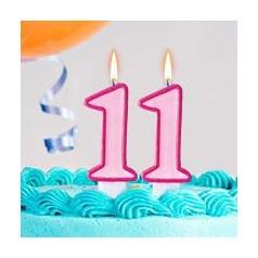 Aniversário 11 Anos Menina