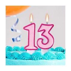 Aniversário 13 Anos Menina