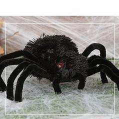 Aranhas Halloween