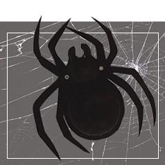 Teias de Aranha Halloween
